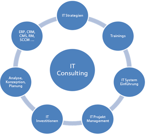 IT & Strategy Consulting Model